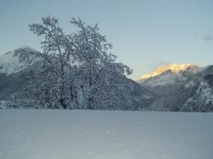 Inverno2008_2009 013